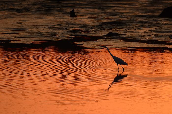 Telia lake changes colour during sunset