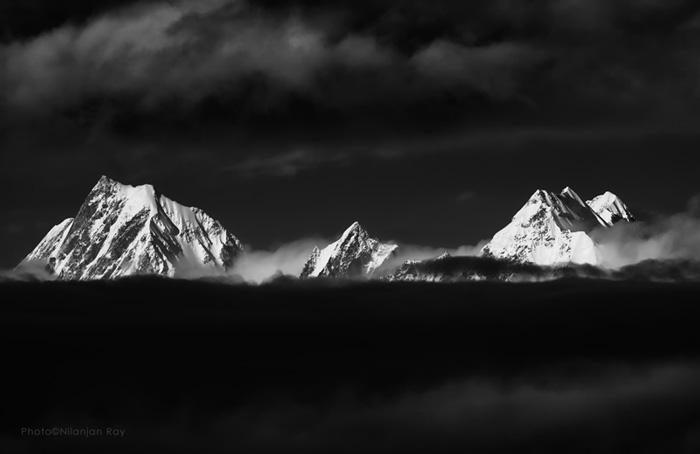 Panchachulis   Icebergs
