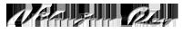 Nilanjan Ray Logo