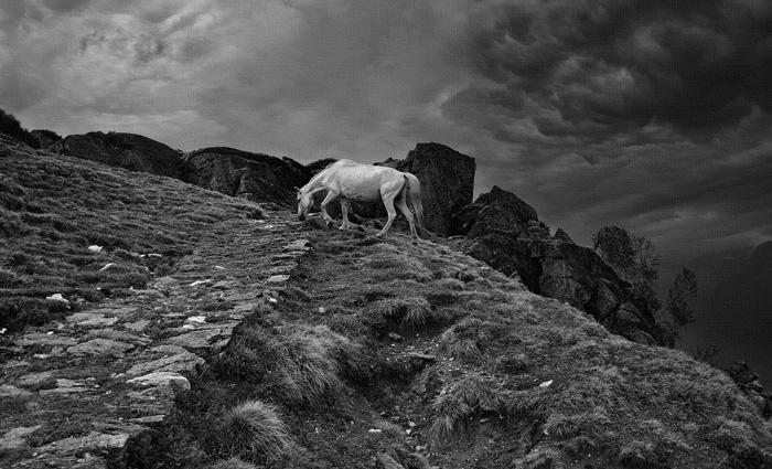 Pony, 11000 feet