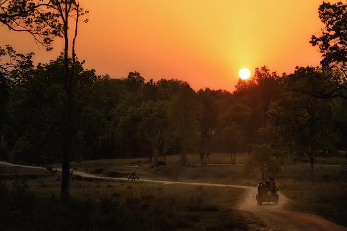 Sunset in Kanha