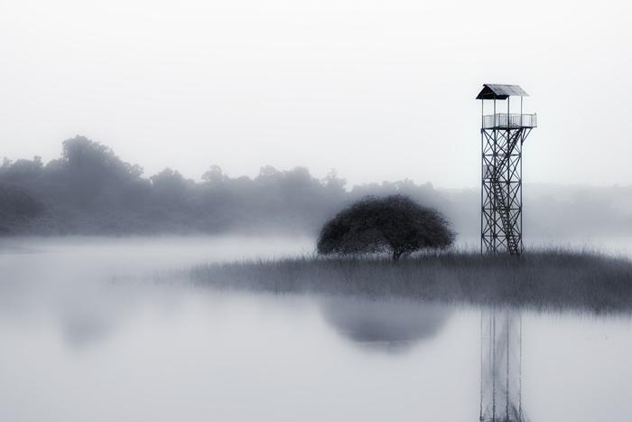 Watchtower, Telia Lake, Tadoba.